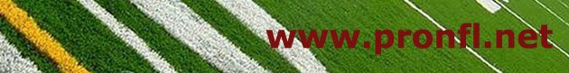 NFL 2015 Online Pro Football